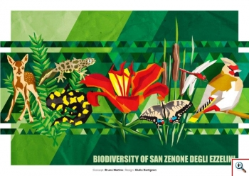 "Biodiversity of San Zenone degli Ezzelini"""